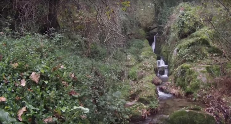 Pelos Trilhos de Portugal-Rota dos Rios e Levadas, Oliveira de Frades