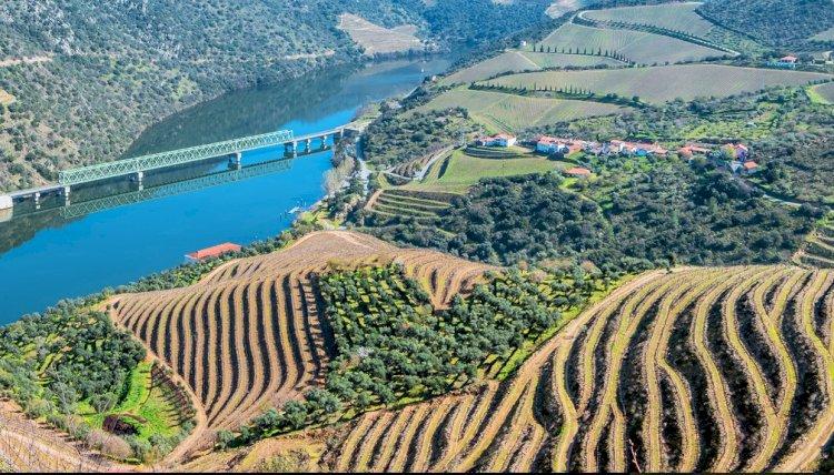 Pelos Trilhos de Portugal-Rota do Castanheiro, São João da Pesqueira