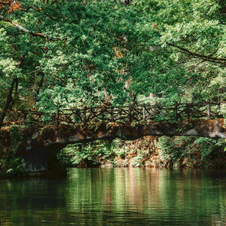Pelos Trilhos de Portugal-Trilho da Águia do Sarilhão, Terras de Bouro