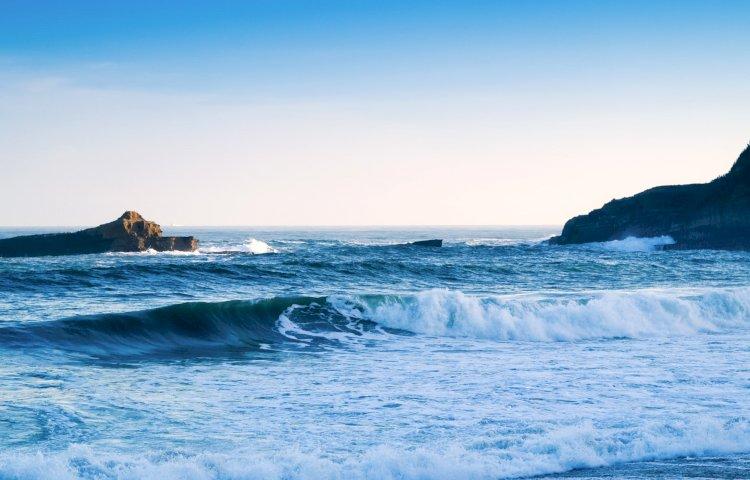 Oceanos e alterações climáticas em debate no Museu de História Natural