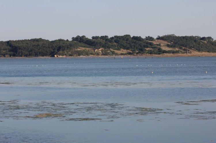 Pelos Trilhos de Portugal-Percurso dos Patos Reais, Óbidos