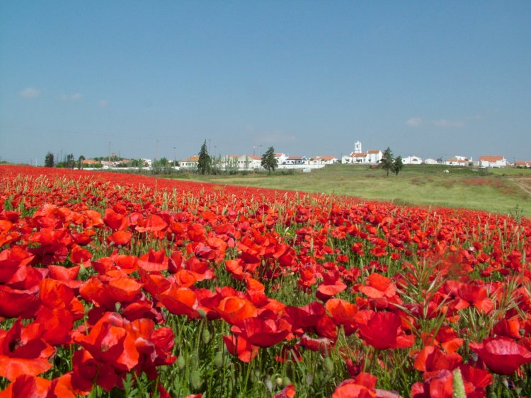 Pelos Trilhos de Portugal-Aljustrel tem uma Mina, Aljustrel