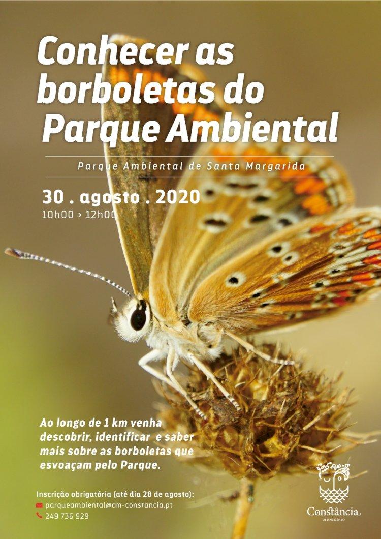 """Venha """"Conhecer as Borboletas"""" no Parque Ambiental de Santa Margarida"""