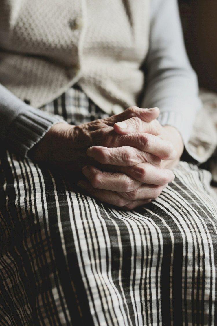 Jovens de Gaia garantem apoio domiciliário a idosos