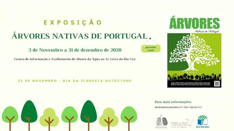"""Exposição """"Árvores Nativas de Portugal"""" em Arcos  de Valdevez"""