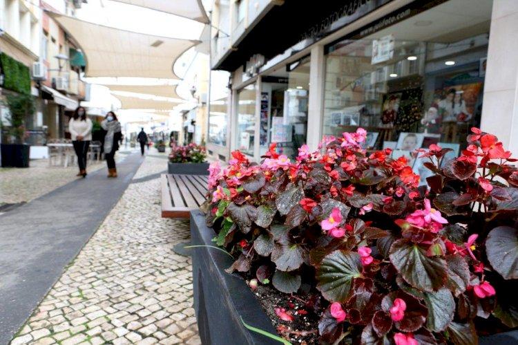 Alunos de arte expõem aguarelas e gravuras nas montras do centro histórico de Portimão