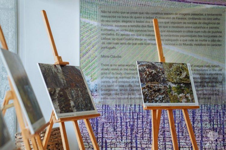 Núcleo Museológico de Favaios acolhe exposição sobre a Biodiversidade do Vale do Tua