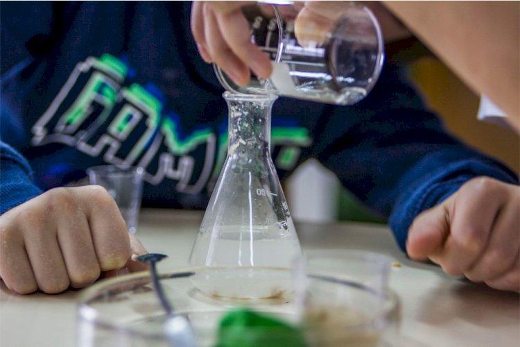 Fórum Nacional Clubes Ciência Viva na Escola: o futuro da ciência está nas mãos destes alunos