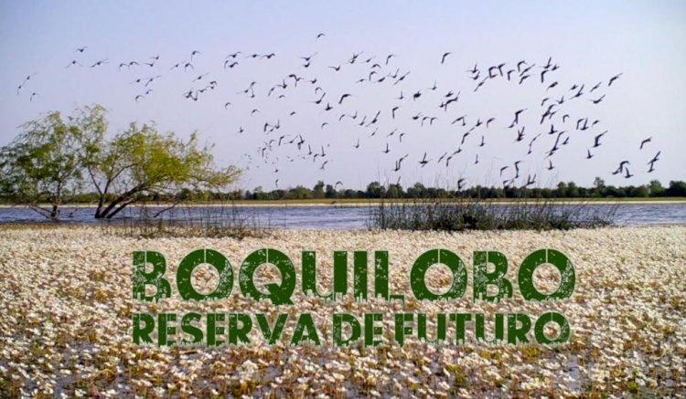 Estreia de curta metragem Boquilobo. Reserva de Futuro