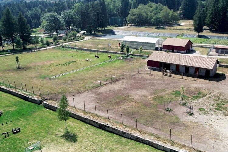 Boticas Parque alvo de investimento de cerca de 250 mil euros