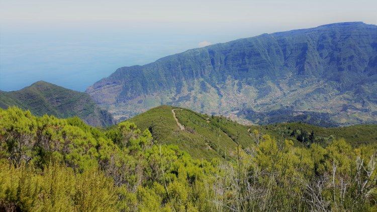 Projeto da estrada das Ginjas é um atentado ao património natural da Madeira, dizem nove ONG de Ambiente