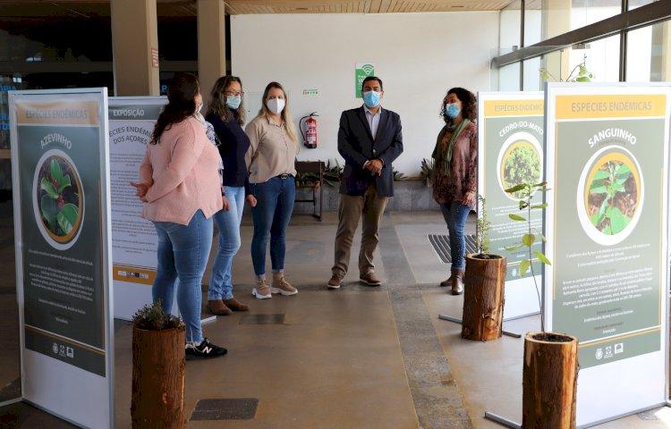 São Roque do Pico inaugurou uma exposição sobre 'Plantas Endémicas dos Açores'