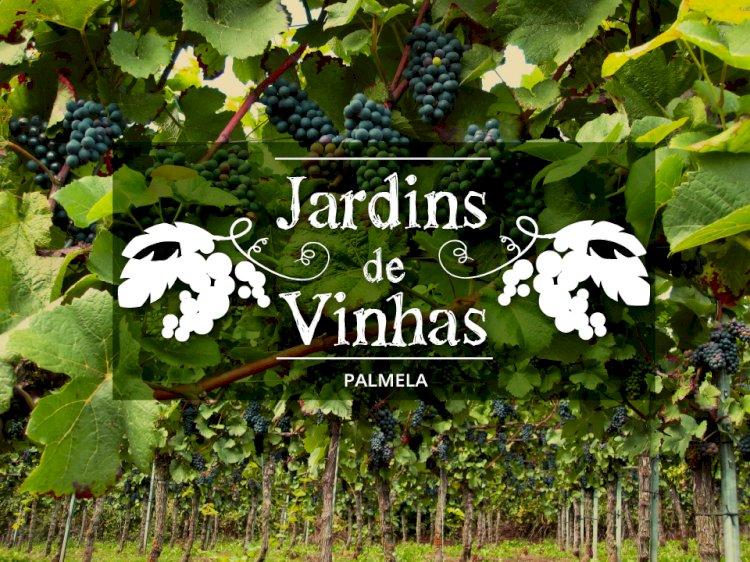 """Novo Percurso Pedestre """"Jardim de Vinhas"""" alia enoturismo e turismo de natureza"""